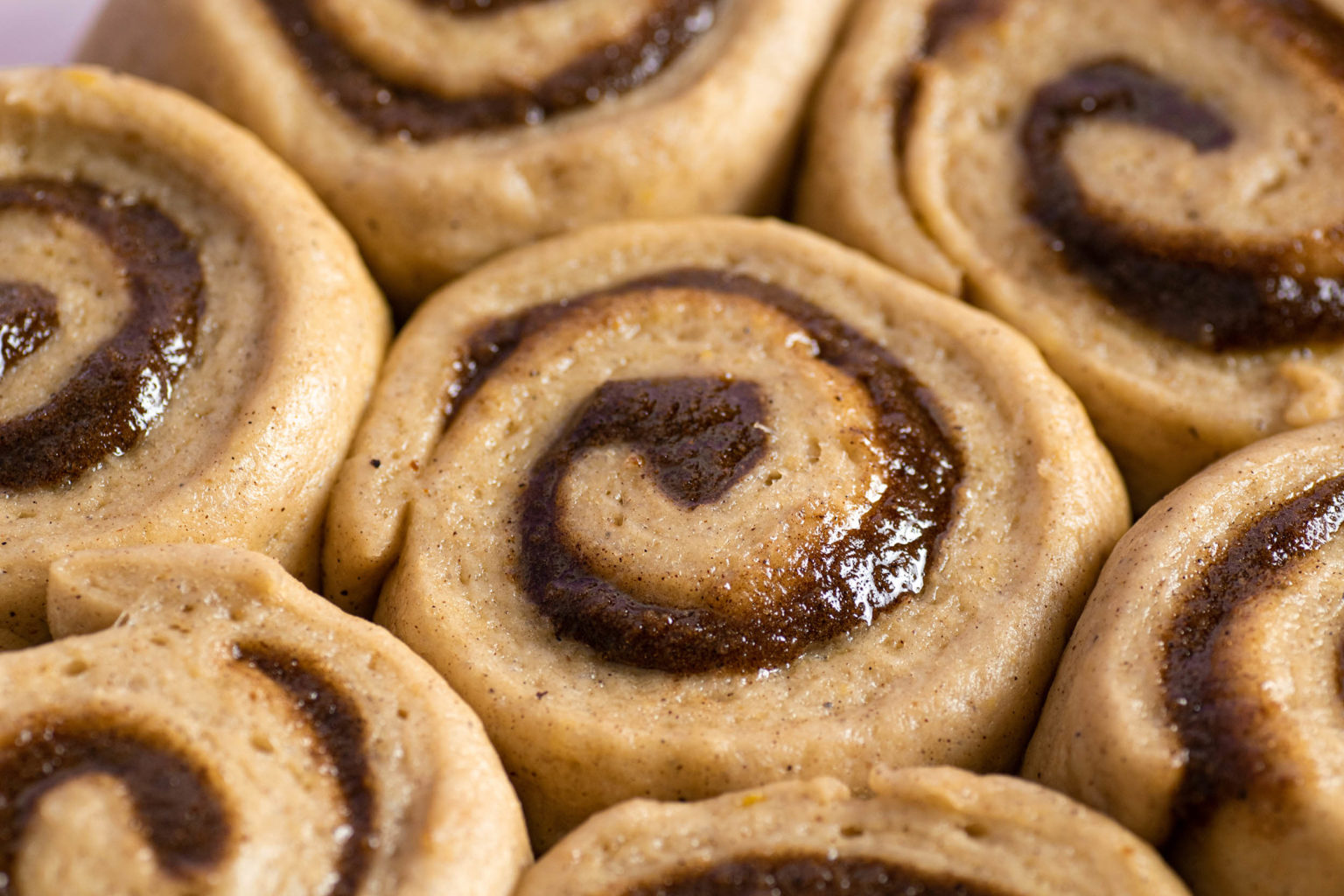 Close-up of Uncooked cinnamon rolls in tray