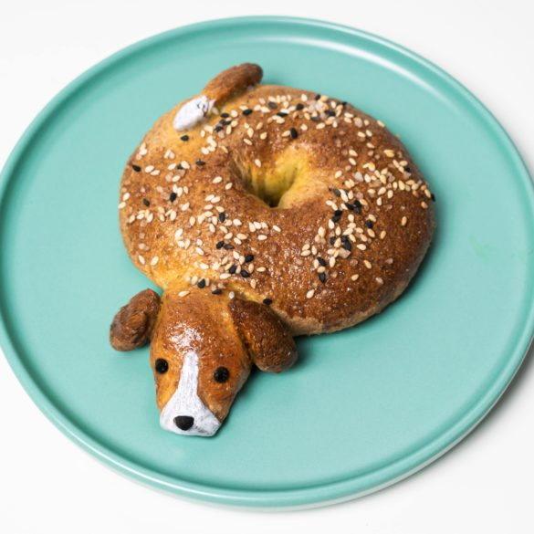 Beagle Bagel on turquoise plate