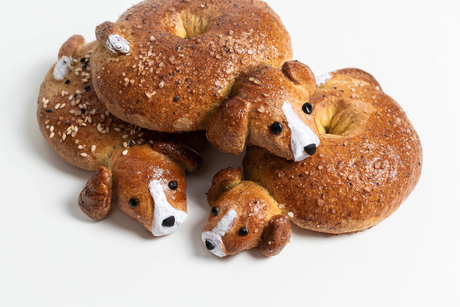 Three beagle bagels on top of each other